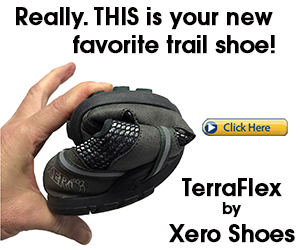 TerraFlex trail running shoe